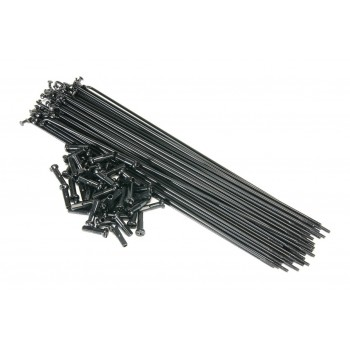 RAYONS MACH1 BLACK (Sachet x 100)
