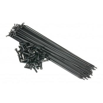 ECLAT PG SPOKES BLACK (x 50)