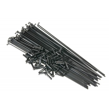 SALT PG SPOKES BLACK (x 40)