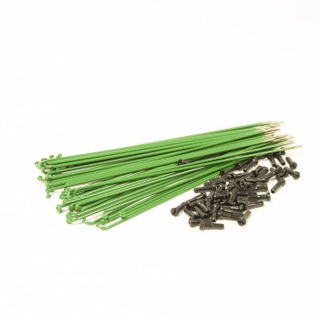 SALT PG SPOKES GREEN (x 40)