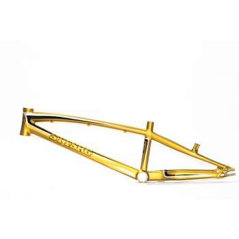 STAY STRONG FOR LIFE FRAME GOLD